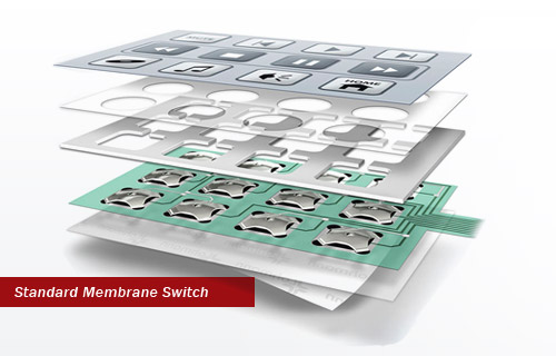 China Based Membrane Switch